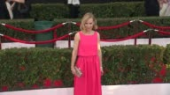 Amy Ryan at the 21st Annual Screen Actors Guild Awards Arrivals at The Shrine Auditorium on January 25 2015 in Los Angeles California