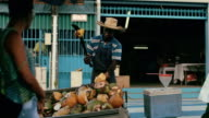An Afro-Caribbean market trader sells coconut water and drinking coconuts on a local market in Martinique