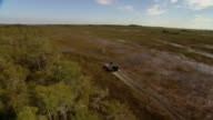 An airboat speeds across swampland in the Everglades.