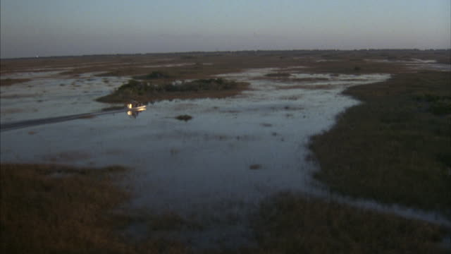 An airboat travels through the Everglades swamp.