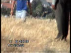 An alleged brutal attack on an elderly Palestinian shepherd and his family was caught on film near an Israeli settlement in the West Bank Two Israeli...