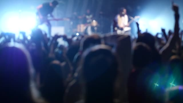 An anonymous crowd at a rock concert