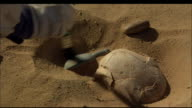 An archaeologist dusts sand from an half-submerged artefact with a small brush. Available in HD.