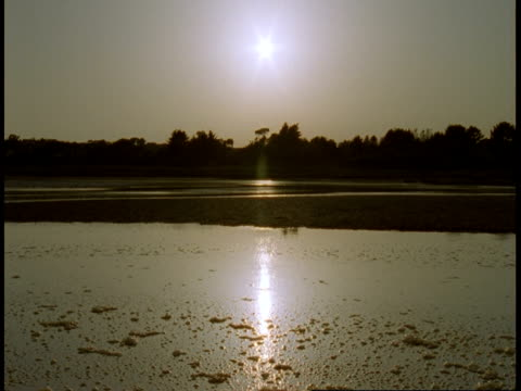 An inlet reflects a hazy sky and sun.