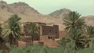 WS Ancient Kasbah and palm trees, El Kaala Mgouna, Morocco