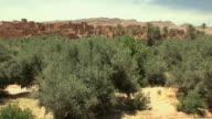WS TU Ancient Kasbah in oasis, El Kaala Mgouna, Morocco