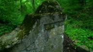 Alte stone