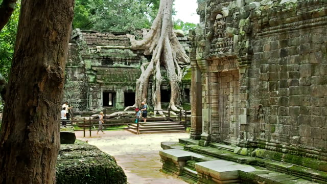 Ancient Temple in the Jungle