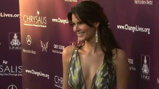 Angie Harmon at the 8th Annual Chrysalis Butterfly Ball at Los Angeles CA