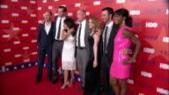 HD Angled MS Cast lining up amp posing on red carpet Tony Hale Timothy Simons Julia LouisDreyfus Matt Walsh Anna Chlumsky Reid Scott Sufe Bradshaw...