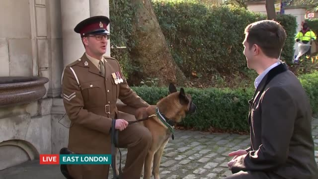 Army dog awarded Dickin Medal for bravery in Afghanistan London EXT Corporal Daniel Hatley interview SOT
