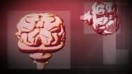 MULTIPLE EXPOSURE CGI Animation of Human Brain
