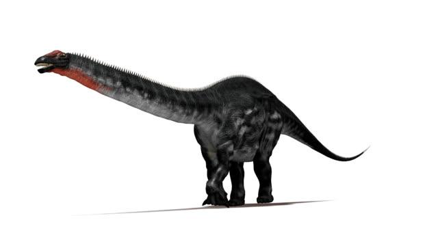 Apatosaurus dinosaur running