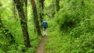 Appalachian Trail hiker George Washington National Forest Virginia