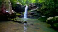 Appalachian Wilderness Waterfall