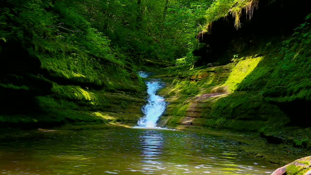 Appalachian Wilderness Waterfall