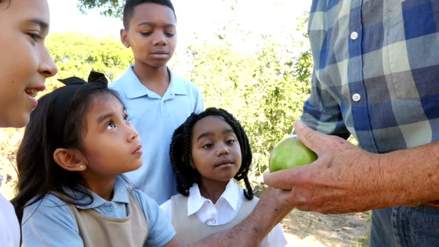 Apple farmer talks to diverse private school elementary students on field trip to apple orchard