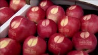 Apples stamped with the COP21 logo featuring the Eiffel Tower will be made available at the climate talks starting at the end of the month