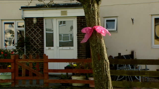 Pink ribbons outside family home WALES Powys Machynlleth EXT Police officer standing outside house / police officer / women tying pink ribbon on tree...