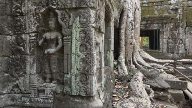 TD / Apsara relief and strangler fig tree roots at Ta Prohm temple