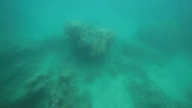 Aqaba Coral Reef seen from a small tourist submarine
