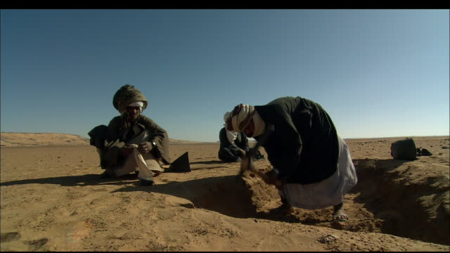 Archaeologists dig at an excavation site on a desert plain. Available in HD.