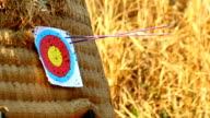 Archer target