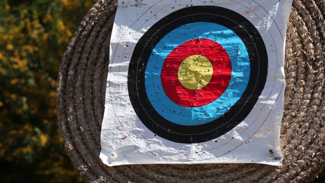 Archhery Target, arrow hits bullseye