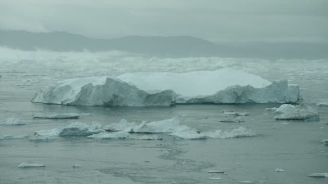 Arctic Seascape With Icebergs