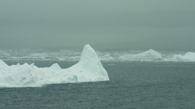Arctic Waterscape With Icebergs