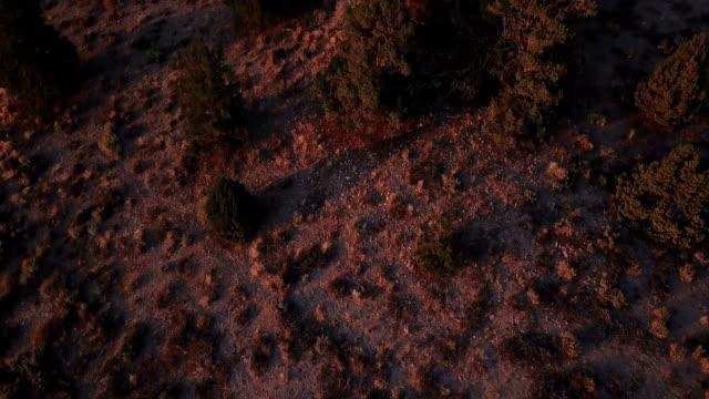 Ariel weergave van Californië rood verlichte wildernis