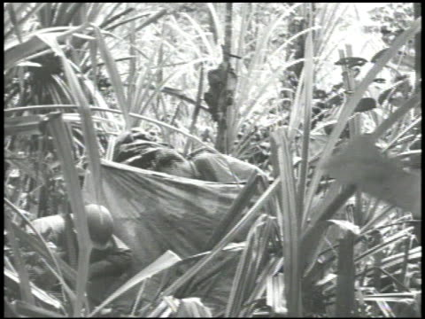 Army soldiers setting up tents in jungle one soldier w/ machete one GI in front of group drinking from metal cup watching VS Soldiers moving machines...
