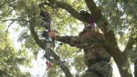 Arqueros vestidos con trajes de camuflaje suben a los arboles en las noches y esperan a tirar en las afueras de Madrid