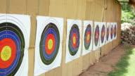 Arrow hitting the target