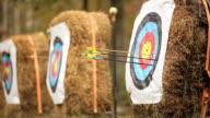 arrow shot at a target