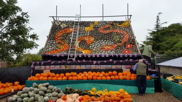 Artist Mark Ford puts the final touches to a Snakes and Ladders themed pumpkin mural in Slindon West Sussex for the village's annual pumpkin harvest...