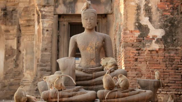 asia scimmia e vecchia immagine di buddha nel Tempio Thai