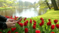 Asian people using smartphone for take tulip flower