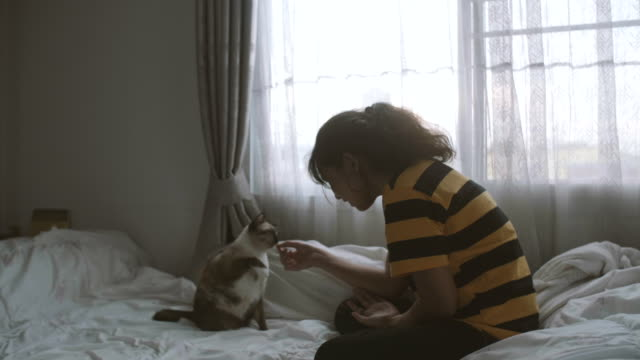 Asian Young woman feeding with cat.