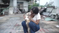 Asian Young woman playing with cat.