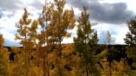Aspen fährt in Colorado