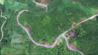 Asphalt road in the forest view above from drone