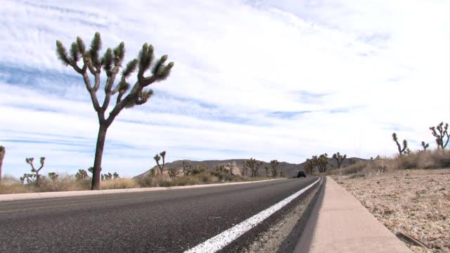 Assortment of Automobiles on Desert Highway