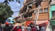 At least 49 people were killed when a powerful earthquake rocked Mexico on Tuesday toppling buildings in the capital and sowing panic on the...
