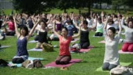 Attendees take part in an outdoor yoga class at a park during the Yogafest Yokohama 2014 event in Yokohama Japan