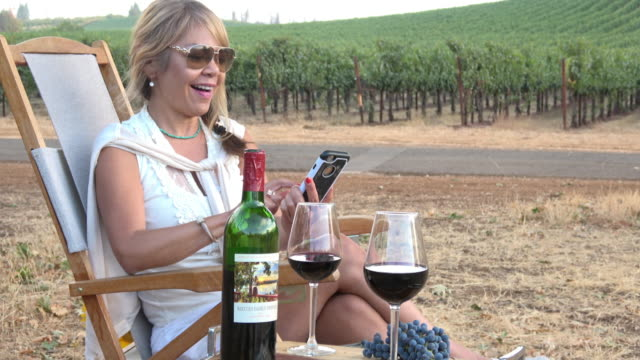 Attractive Woman Talking on Mobile Phone in a Picnic Vineyard