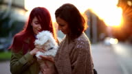 Attractive Young Women Embracing Little White Maltese Dog