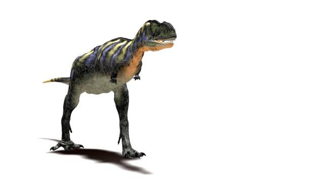 Aucasaurus dinosaur walking