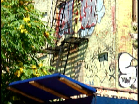August 24 2005 MONTAGE Abandoned building with graffiti in Brooklyn neighborhood / New York United States