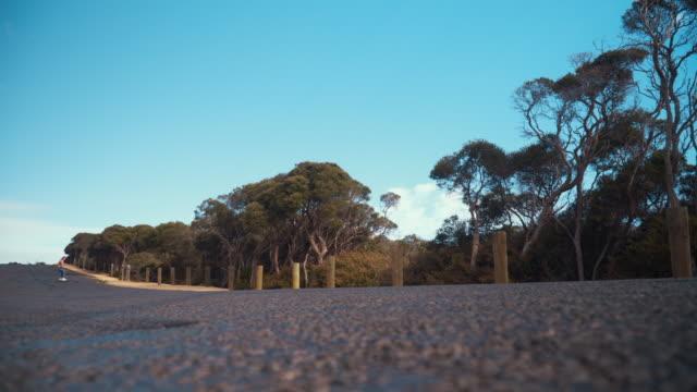 Australian Locals in Sport: female skater